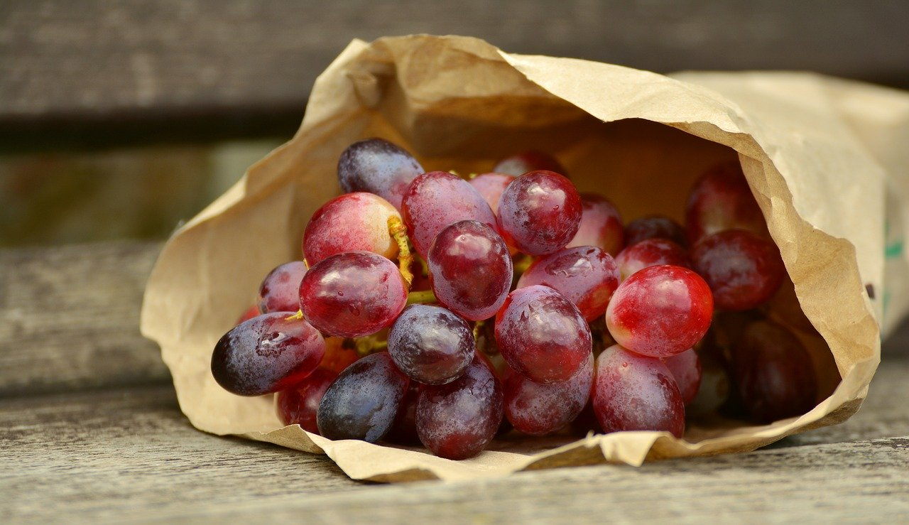 uva e conservazione