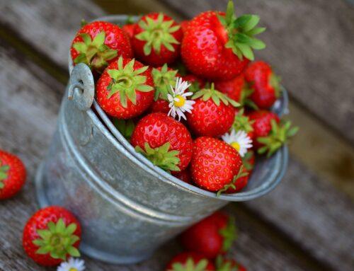 Le fragole, caratteristiche nutrizionali ed usi in cucina
