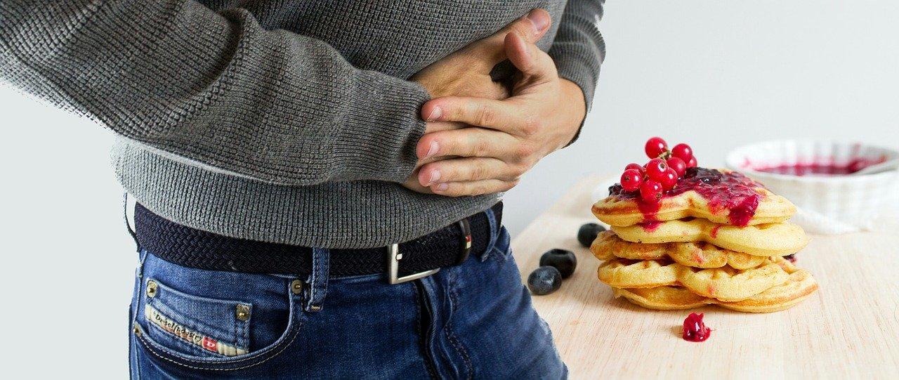 apparato gastrointestinale