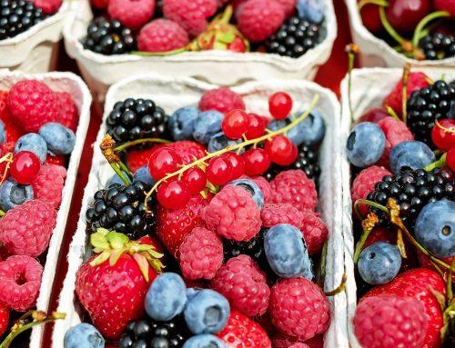Frutti di bosco: valori nutrizionali, proprietà e benefici.