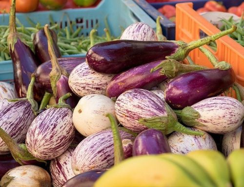 Le melanzane, proprietà, controindicazioni e usi in cucina